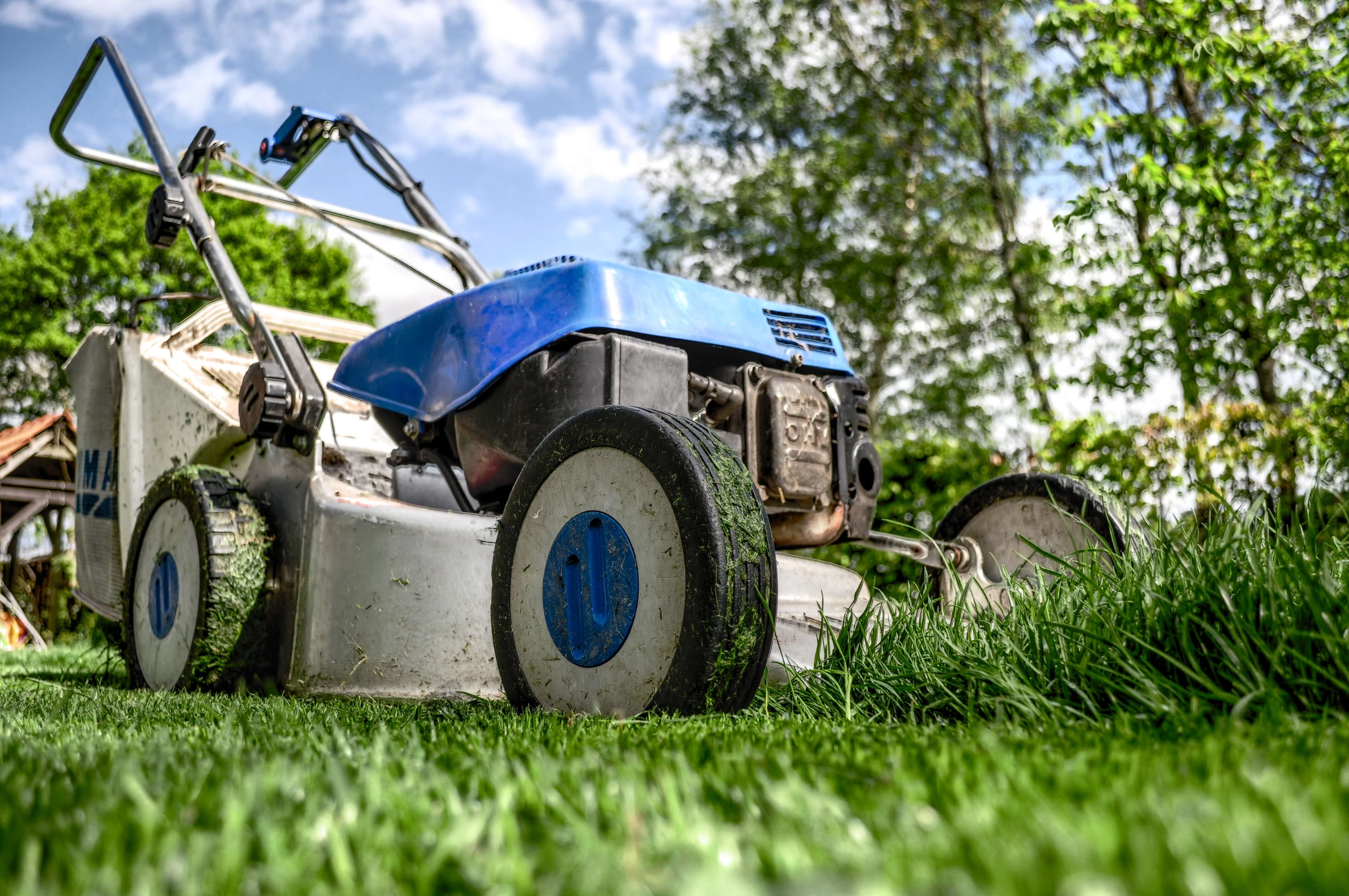 Top 6 Lawn Care Business Apps to Grow Your Business