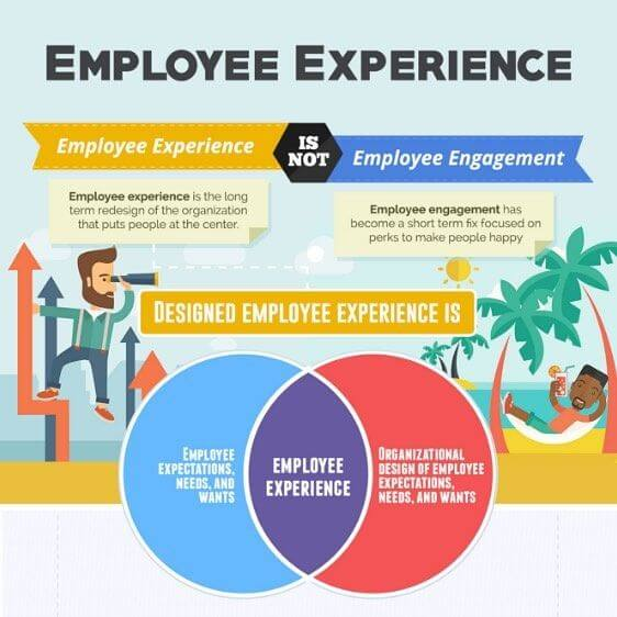 The Employee Experience Cheat Sheet (Infographic)